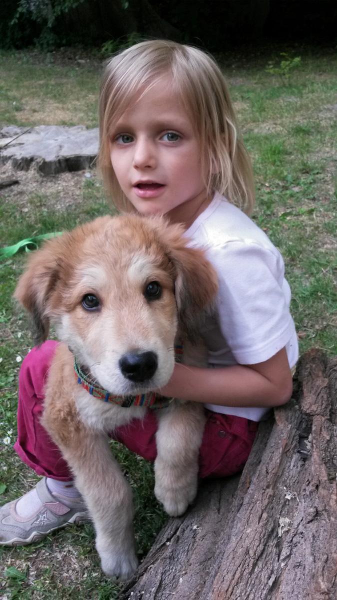 Lucky Dog (10)