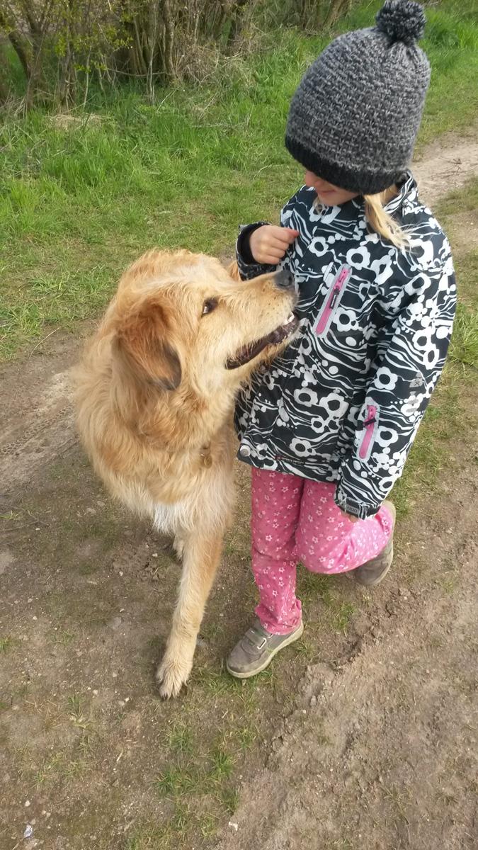 Lucky Dog (18)