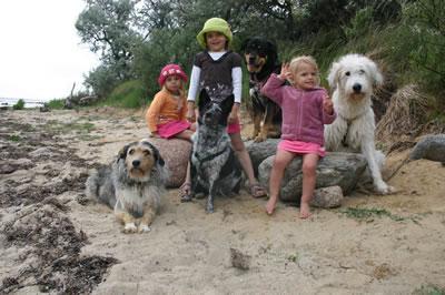 """Unsere Hunde mit unseren 3 """"großen"""" Kindern an der Ostsee"""